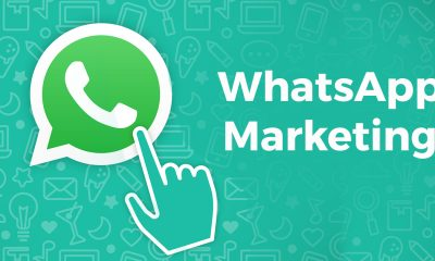4 Stages of Using Whatsapp Marketing for Beginners - Froggy Ads